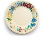 /en/products/disposable-tableware/disposable-plate-muhu-small-/natural-white-12-pc.-MVV-454